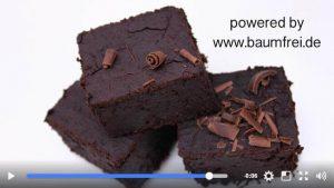 veganes 3 Gänge Menü - baumfrei.de - Vorschau Brownies
