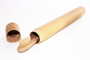 bambus etui und bambus zahnbürste reiseetui baumfrei