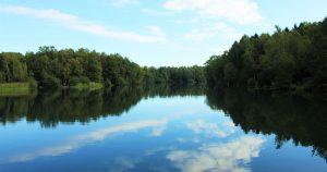 Natur Bäume Wasser Himmel baumfrei