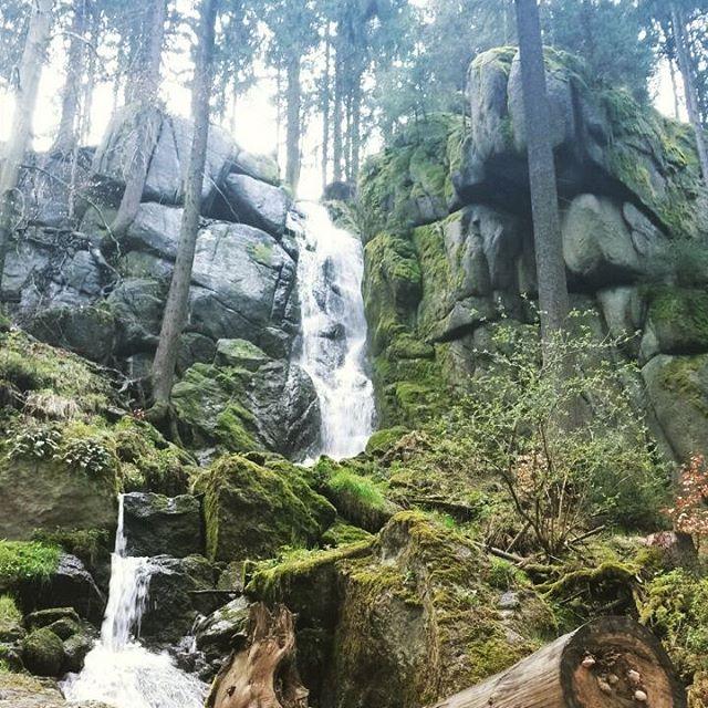 Wasserfall im Wald Eckhart Tolle Blog baumfrei