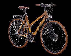Bambus Fahrrad Vollausstattung