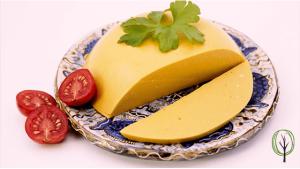 veganen Käse selbst machen Rezept - baumfrei.de - Beitragsbild
