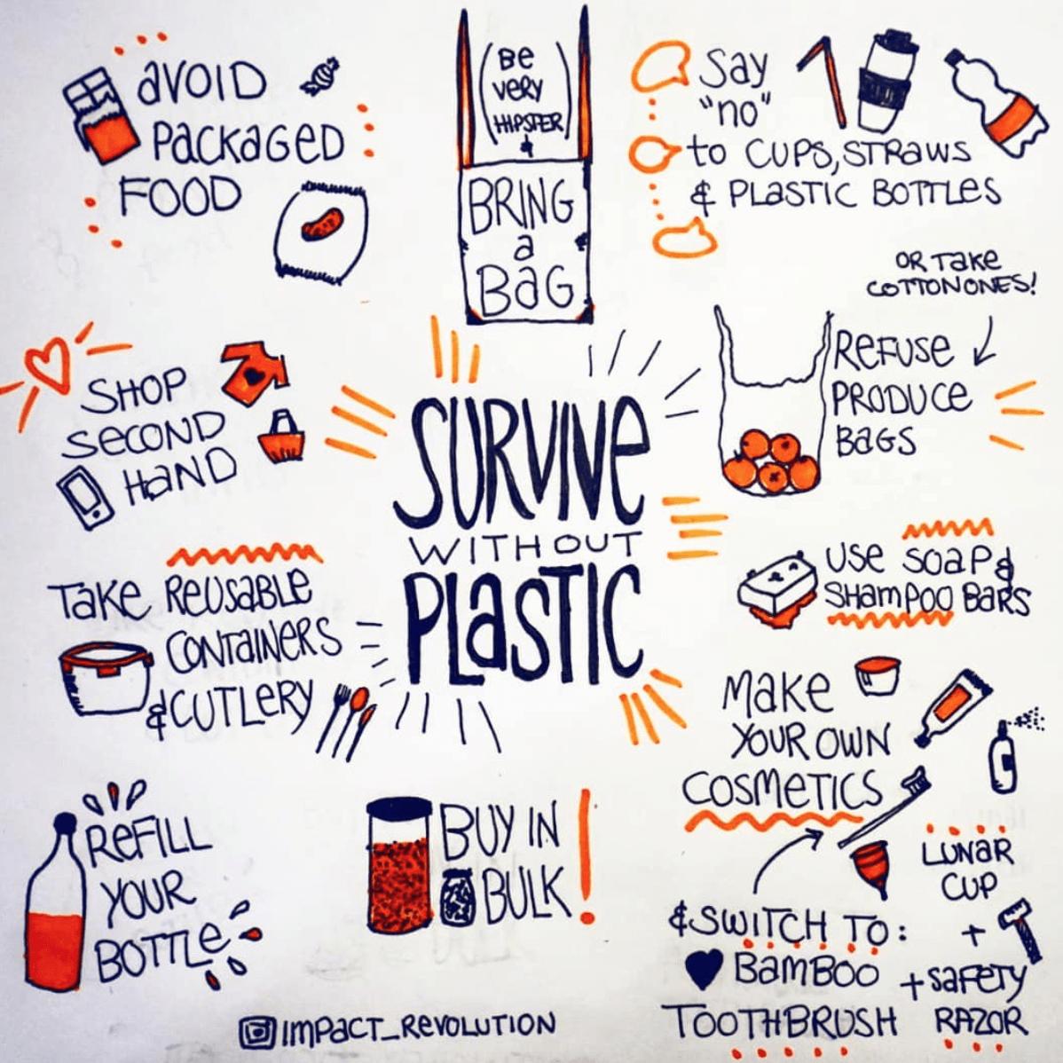 Ohne Plastik leben - Impactrevolution - baumfrei.de - Artikelbild 4
