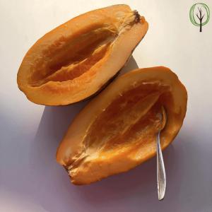 Aufgeschnittene Papaya - baumfrei
