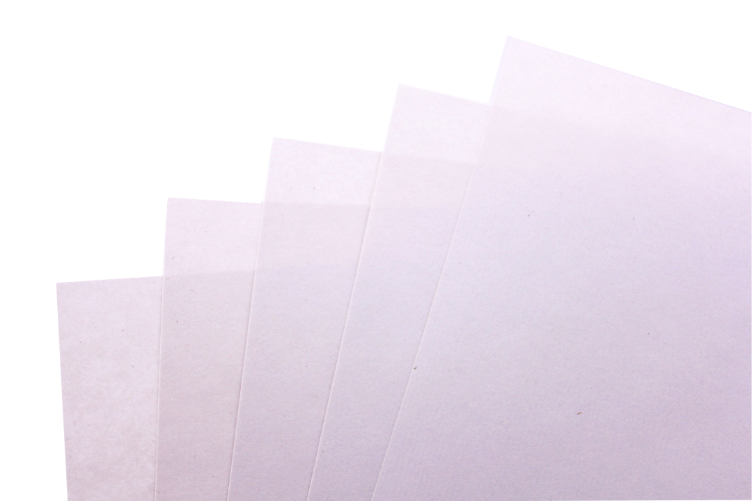 baumfrei Hanfpapier Startseite