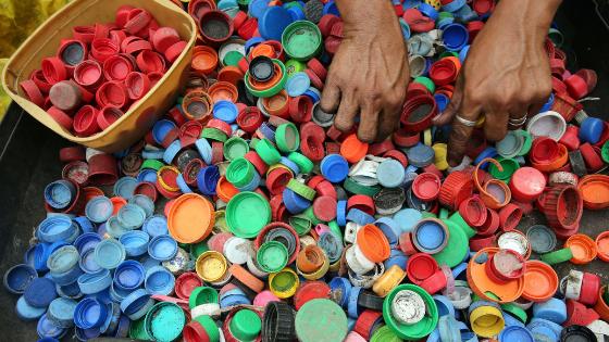 baumfrei - Plastikmüll wird aussortiert