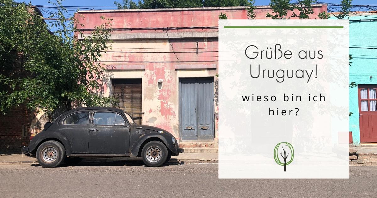 Leben in Uruguay, Haus und Auto
