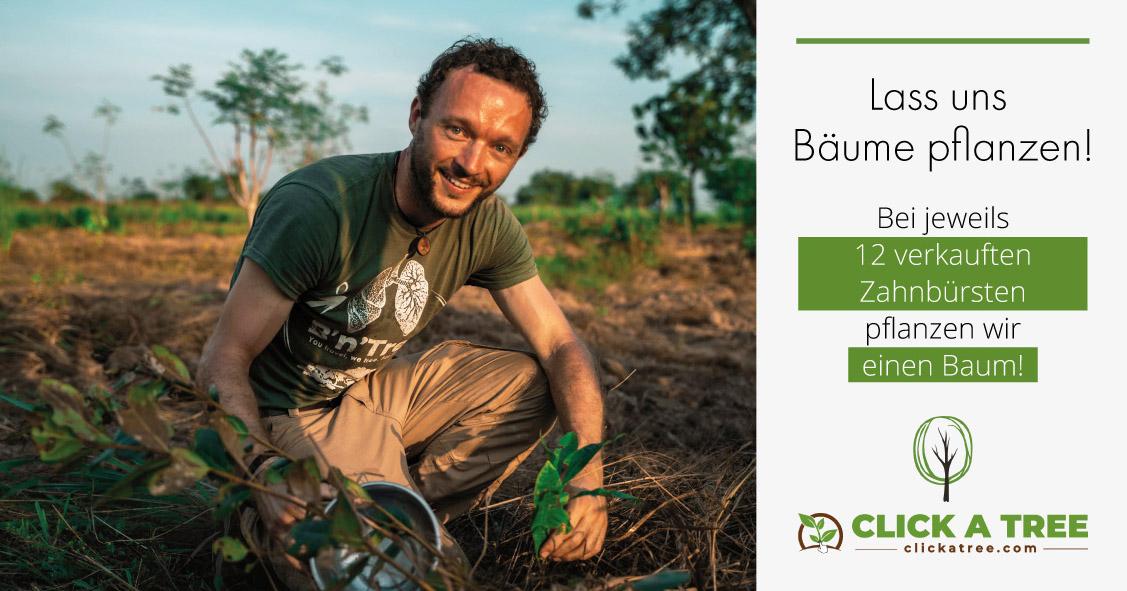 baumfrei-bäume-pflanzen-clickatree-blogbild